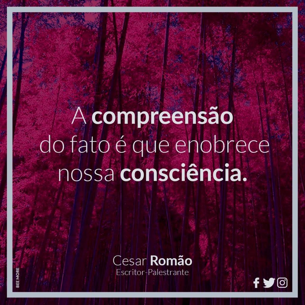 A compreensão do fato é que enobrece nossa consciência